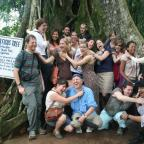 Strangler Ficus Tree strangles the class at Aburi Botanical Garden. Photo by Sandra Vu
