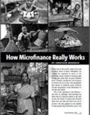 How Microfinance Really Works