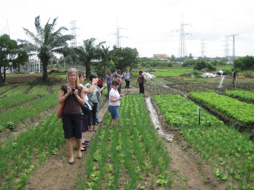 Visiting an Urban Farm outside of Accra. Photo by Sandra Vu