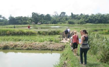 Exploring a aquaculture at Kumah Farms Complex outside of Kumasi. Photo by Sandra Vu