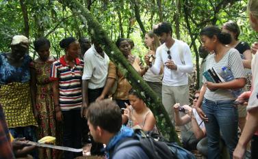Learning in action at  Kuapa Kokoo Cocoa farm outside of Kumasi Photo by Sandra Vu